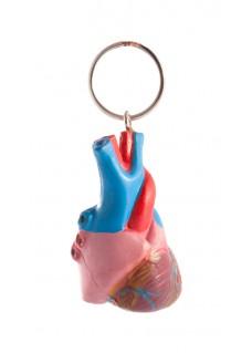 Schlüsselanhänger Menschliches Herz